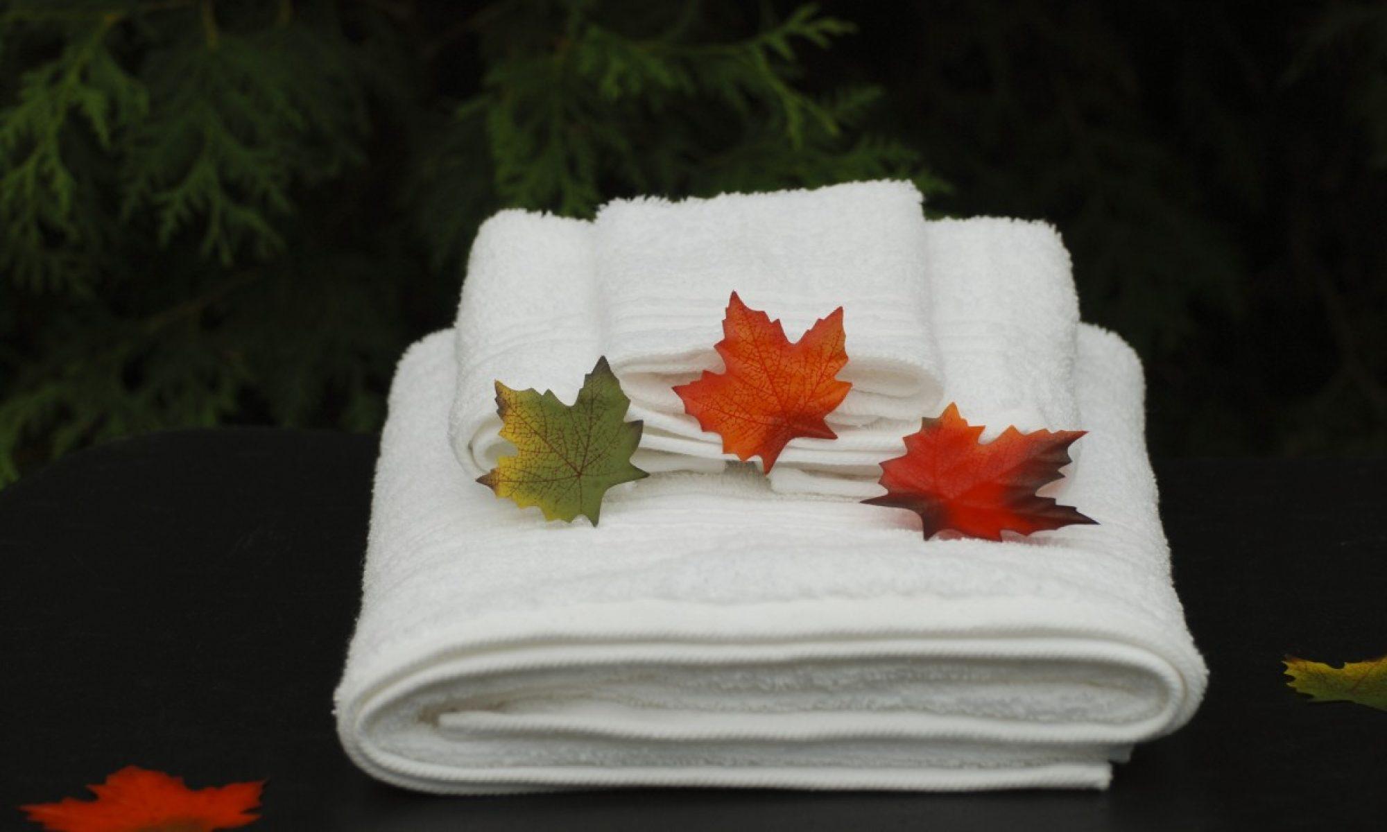 Dorchester Massage Therapy